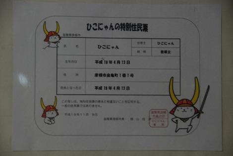 DSC_5600
