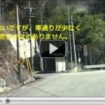 みどり湖の桜を紹介動画