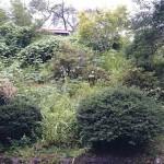 組の祇園と茶臼山美術館