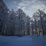 同期北海道スキー4日目(最終日)