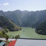 熊野神社桜ライトアップ