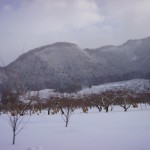家族スキー3日目木島平
