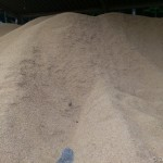 籾殻ゲット