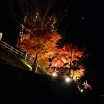 紅葉と英会話と月花祭り