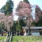 豊根村 上黒川熊野神社 春季大祭