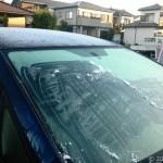 今シーズン初の霜観測