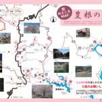 豊根の桜みどころマップ