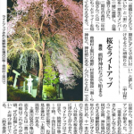 熊野神社春季例祭と花見