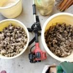 芋掘り芋掘りー!