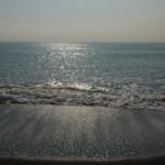 湘南の海を満喫!