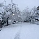 ところ変わって雪景色