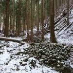 山中に自然と人工の芸術