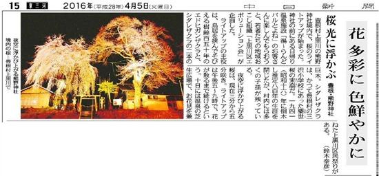 熊野神社桜ライトアップ新聞記事