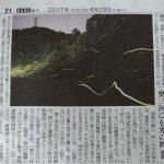 ホタルの光はまだ続き中日新聞へ