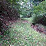 現場確認、草刈り、空手教室