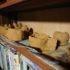 本日の図工教室はドキドキ土器づくり